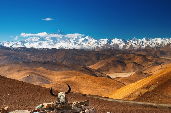 Join Tibet journey group in package