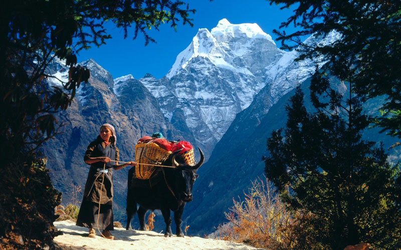 Sherpa Culture in Everest trekking route